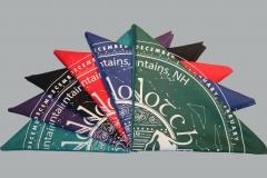 Bandanas: Black, Purple, Teal, Green, Blue, Red