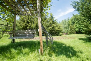 Grape arbor swing, The Notch Hostel, White Mountains, NH