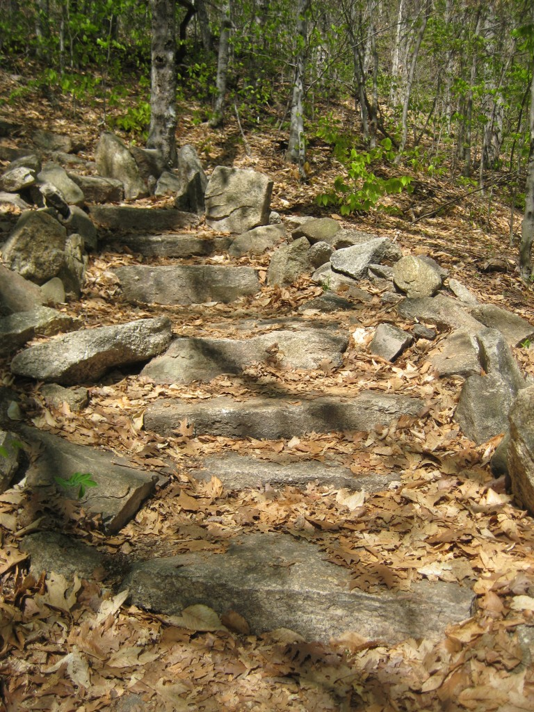 Dickey Mountain Trail.