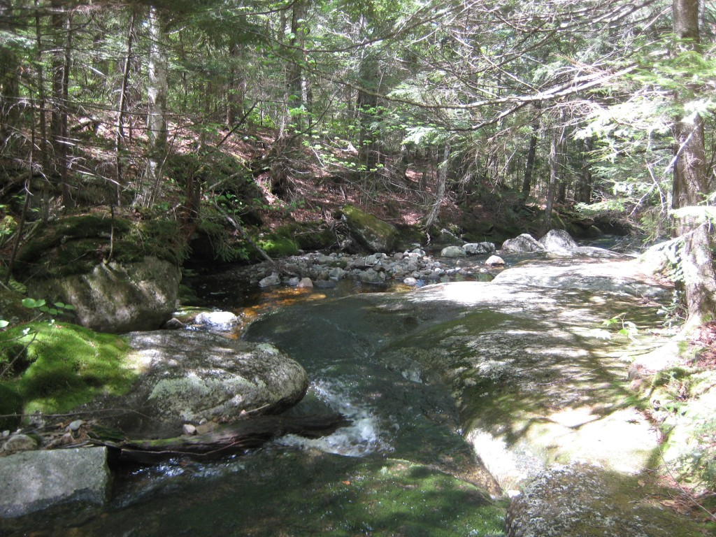 Mt Kinsman Trail water crossing