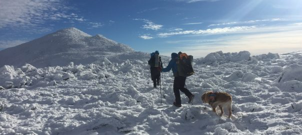 Two hikers and their dog traversing NH's Presidential Mountain Range in Winter